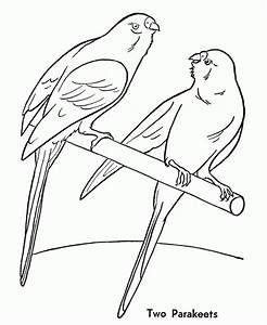 Domestic Animals Coloring Pages For Kids - Coloring Home