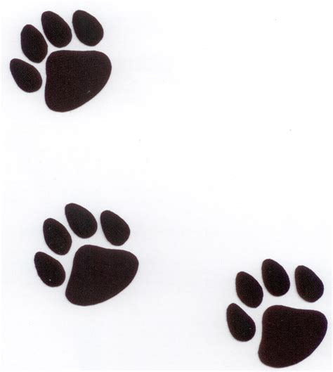 Panther Paw Print Clip Cliparts Co
