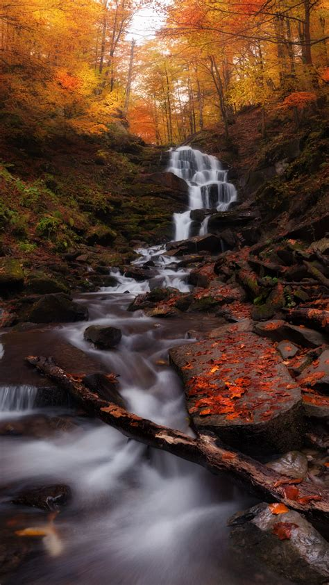 autumn forest waterfall   wallpapers hd wallpapers