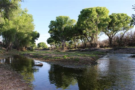 Image result for San Pedro River az