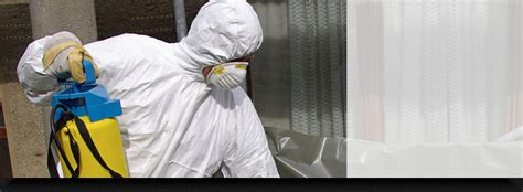 mold remediation portland ct mold removal