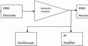 Emg Schematics : emg block diagram explanation electronics and ~ A.2002-acura-tl-radio.info Haus und Dekorationen
