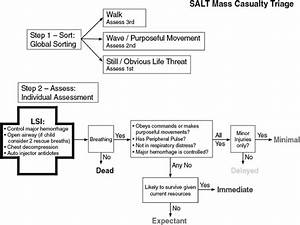 The Salt Triage Guideline  Lsi   Lifesaving Intervention