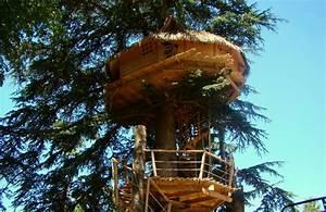 Cabane Dans Les Arbres Construction : construire une cabane dans les arbres vid o et explications ~ Mglfilm.com Idées de Décoration