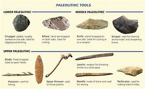 The Paleolithic Period - History 1 ESO DIGITAL