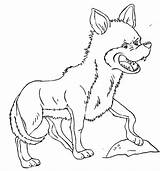 Coyote Coloring sketch template
