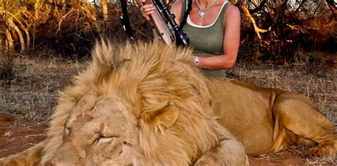 trophy hunting   poaching    conserve wildlife