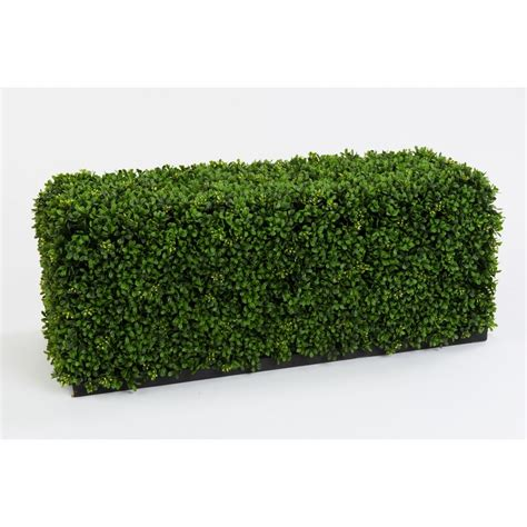 the bonsai tree artificial boxwood hedges bespoke buxus topiary hedging