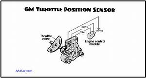 Engine Throttle Position Sensors