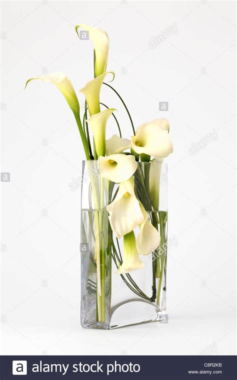 Tulpenstrauß In Vase by Bouquet Lilies In Vase In Stockfotos Bouquet Lilies In
