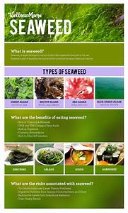 Ankh Rah U0026 39 S Healthy Living Guide  The Benefits Of Seaweed