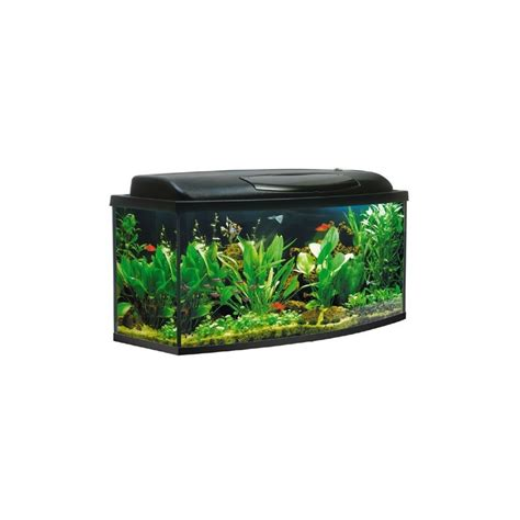 pompe aquarium 200 litres aquarium kit 200 litres jm distribution