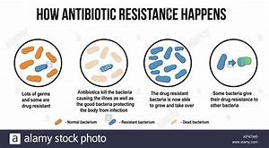 Antibiotic Resistance Stock Photos  U0026 Antibiotic Resistance Stock Images