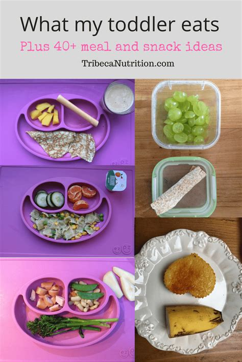 what my toddler eats plus 40 meal ideas feeding bytes 556 | What my toddler eats in a day 4