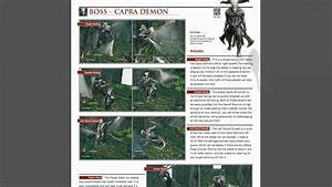 Dark Souls Mini Strategy Guide  Pdf
