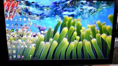 Animated Aquarium Wallpaper For Windows 8 - aquarium desktop wallpapers windows 8 wallpapersafari