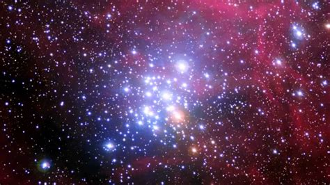young stars   beautiful cluster formed
