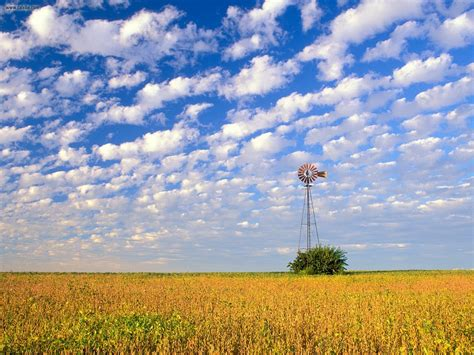 nature country field illinois picture nr