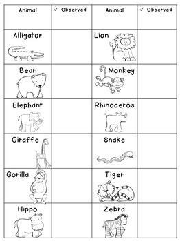zoo  education   core teachers pay teachers
