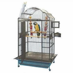 Cage A Perroquet : cage perroquet ~ Teatrodelosmanantiales.com Idées de Décoration