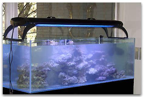 aquarium eau de mer occasion belgique aquarium eau de mer a vendre 28 images aquarium eau de
