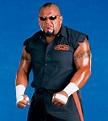 Misused Wrestlers in WWE | Wrestling Amino