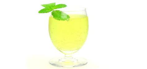 container cuisine lemon squash recipe how to lemon squash