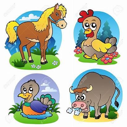 Animals Domestic Farm Animal Clipart Various Vector