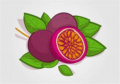 Passion Clipart Fruit Vecteezy