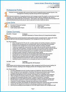 example of a good cv With cv examples