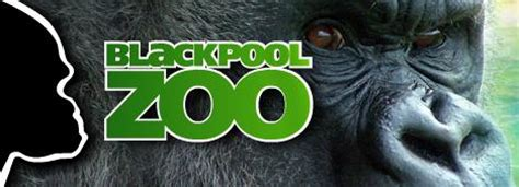 blackpool zoo  great day    holiday