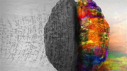 Brain Left Right Trauma Intelligence Artificial Amazing