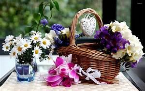 Flower, Basket, Wallpaper, -, Photography, Wallpapers