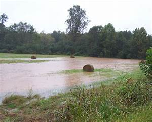 Flood Products -- What Do They Mean?