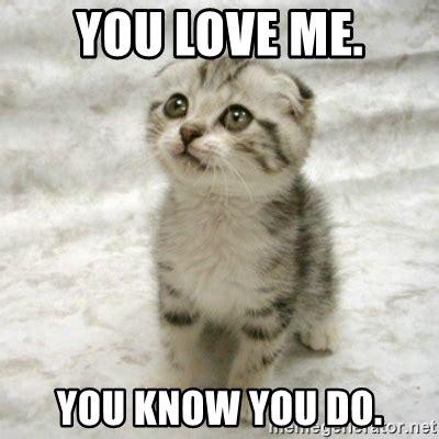 You Love Me Meme - you love me you know you do can haz cat meme generator