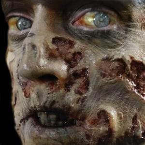 Zombie Flesh - 3D FX Transfers - Tinsley Transfers  Zombie