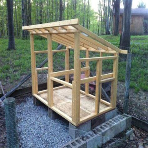 building  chicken coop homesteading  livestock