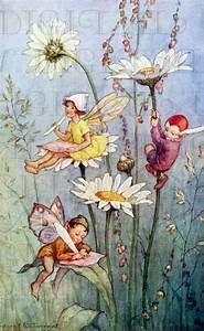 Fairy Writing On FLOWERS. Vintage Book Plate Illustration ...
