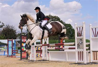 Jumping Equestrian Showjumping Riding Events Unaffiliated Horse