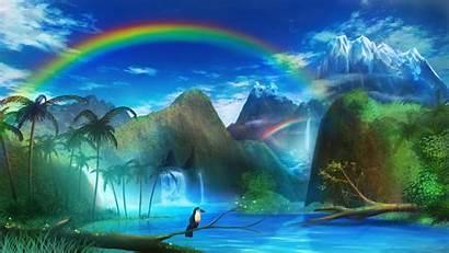 Rainbow Waterfall Toucan 4k Background Uhd