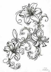 Stargazer Lily Outline Related Keywords - Stargazer Lily ...