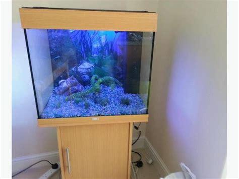 juwel lido 200 fish tank setup wolverhton dudley