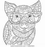 Shutterstock Royalty Coloring Mandala Adult Vector Afkomstig Van Pig sketch template