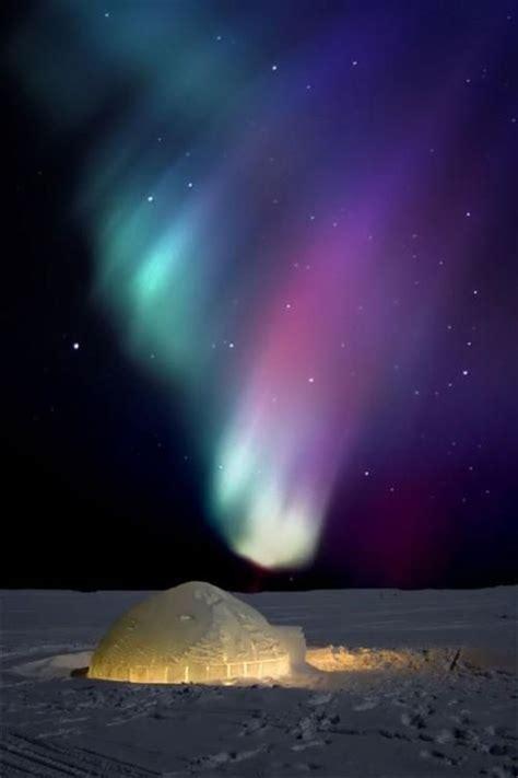 canada northern lights igloo cing the northern lights borealis