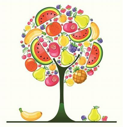 Fruit Tree Craft Clipart Spirit Clip Sunday