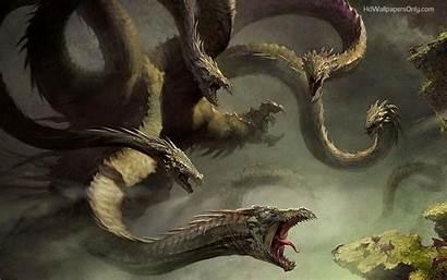 Dragon Wallpapers Head Pixelstalk