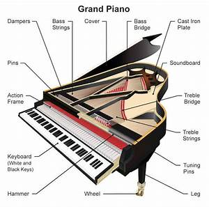 Parts Of A Piano  Grand And Upright Piano Diagrams