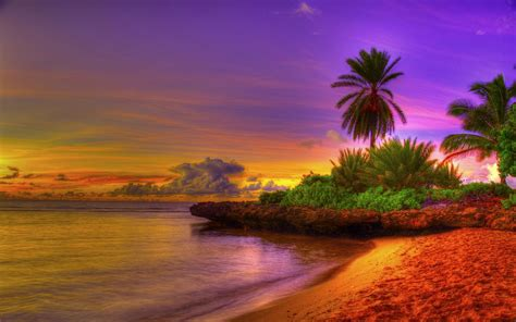 Summer Exotic Beach Background Gallery Yopriceville