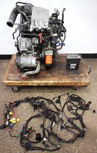 1996 Volkswagen Golf Diesel Engine Wiring