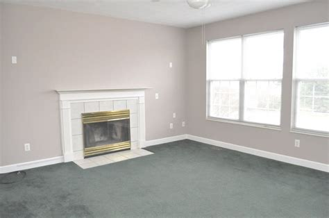 paint colors for living room with green carpet home